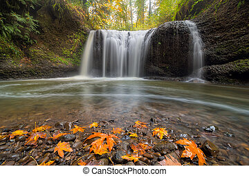 Hidden Falls in Clackamas Oregon