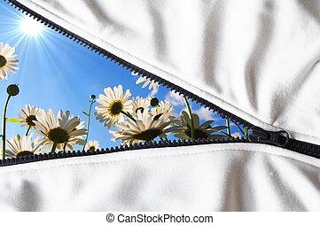 hidden flower - flower hidden behind a zip showing summer...