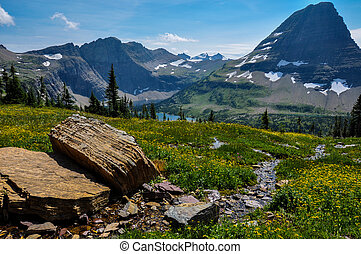 Hidden Lake Trail, Glacier National Park, Montana, USA.