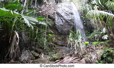 Hidden waterfall at Praslin island - Hidden waterfall in the...