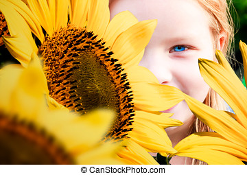 Hiding Behind Sunflowers - Beautiful woman hiding in the...