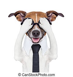 hiding covering crazy dog with tie and dumb glasses