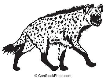 hiena moteada, negro, blanco
