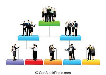 hierarchia, különböző, fa, szervezet, egyszintű