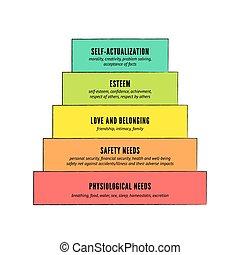 hierarchia, maslow's