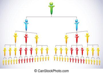 hierarchia, organisational