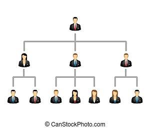 hierarki, firma, struktur