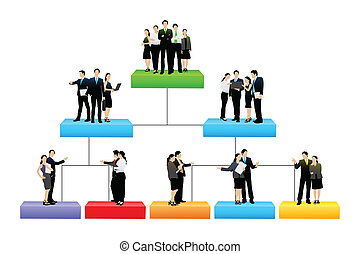 hierarki, forskellige, træ, organisation, niveau