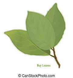 hierba, hojas, bahía