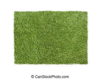 hierba verde, aislado, blanco