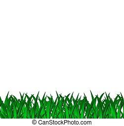 hierba verde, aislado