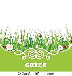 hierba verde, bandera