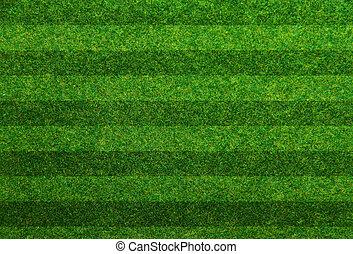 hierba verde, campo del fútbol, plano de fondo