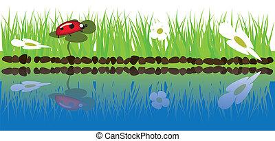 hierba verde, cerca, agua
