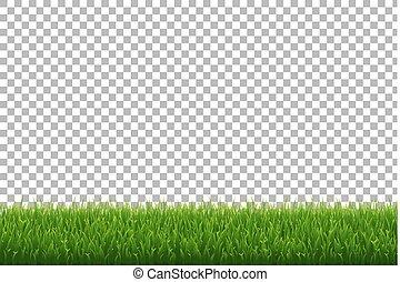 hierba verde