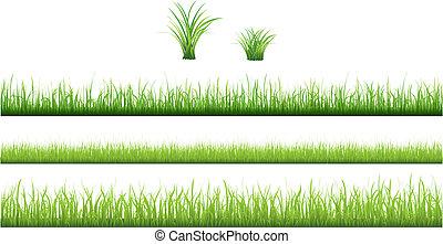 hierba verde, colección