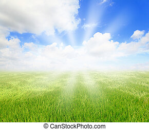 hierba verde, con, cielo azul, y, sol
