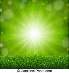 hierba verde, con, sunburst, plano de fondo