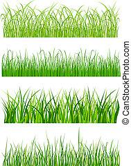 hierba verde, elementos, y, patrones