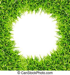 hierba verde, marco, aislado, blanco, plano de fondo