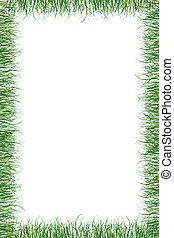 hierba verde, papel, verano, plano de fondo