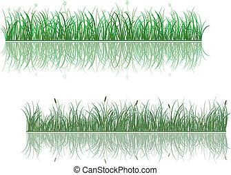 hierba verde, patrones