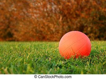 hierba verde, vóleibol de playa