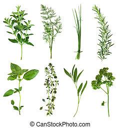 hierbas, colección