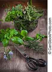 hierbas, con, vendimia, jardín, tijeras