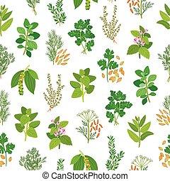 hierbas, especias, seamless, patrón