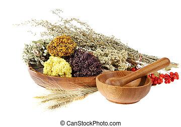 hierbas, fondo blanco, medicinal