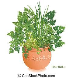 hierbas, jardín, maceta, multa, arcilla