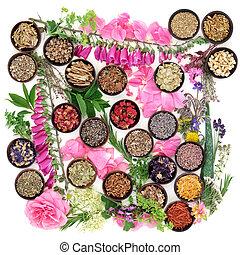 hierbas medicinales, y, flores