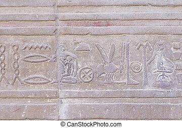 Hieroglyph in The Temple of Kom Ombo ( Egypt) - The earliest...