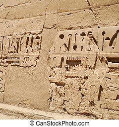 hieroglyphics - Egypt hieroglyphics in Luxor, signs