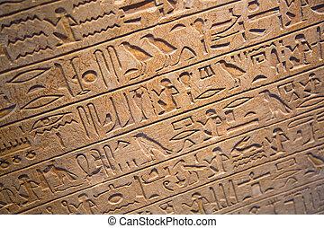 Hieroglyphs on the wall - Egyptian hieroglyphs on the wall