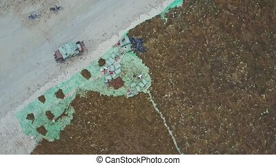 High Aerial View Car by Vast Areas of Seaweeds on Beach -...