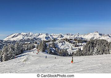 High Altitude Ski Domain
