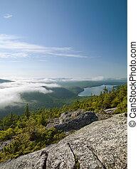 scenic shot of mountain range and pine trees