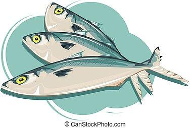 high-angle Vector of fresh mackerel Illustration