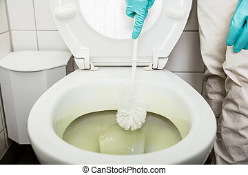 Person Hand Using Brush To Clean The Toilet Bowl - High ...