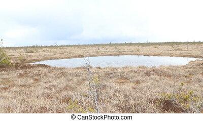 High bog with round lake