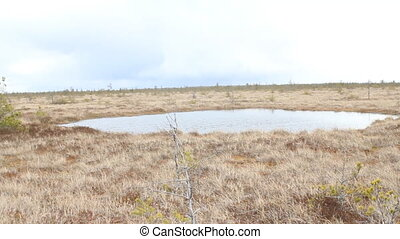 High bog with round lake - Special northern high bog with a...