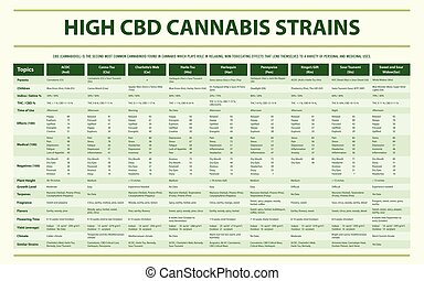 High CBD Cannabis Strains horizontal infographic ...