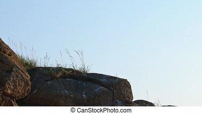 High cliff with steppe grass on the top tilt shot till rock...