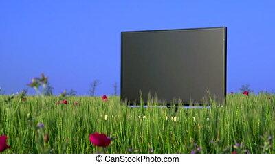 High definition plasma TV on green meadow