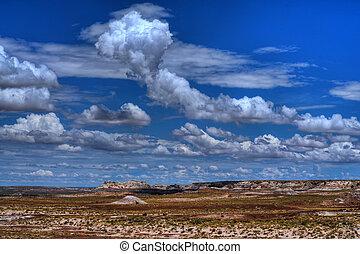 High Desert Storm