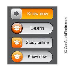 high-detailed, buttons., 教育, 現代