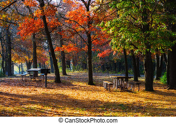High Dynamic Range image of a campsite. - High Dynamic Range...