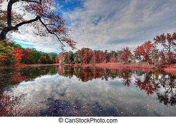 High Dynamic Range Landscape of a Maryland pond in Autumn
